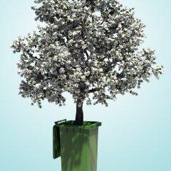 Der schmale Grat – Nachhaltigkeit in kleinen Unternehmen