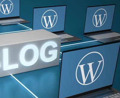 Wordpress-iIlu-04Detail