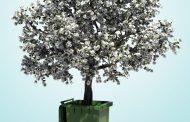 Der schmale Grat - Nachhaltigkeit in kleinen Unternehmen