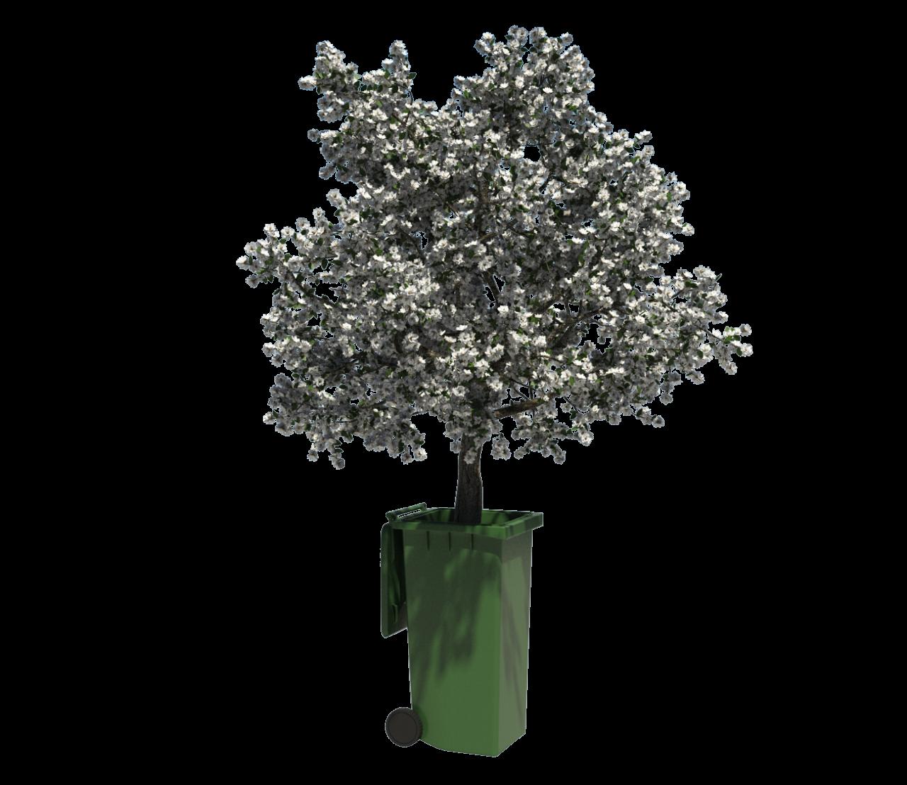 Baum inne Tonne