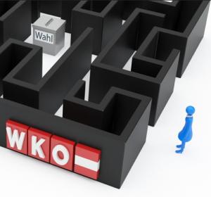 WKO Wahl Detail 2
