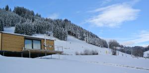 Winter2 Microloft