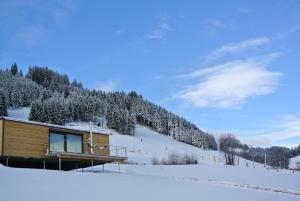 Winter Microloft