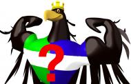Hofer oder Van der Bellen – Wer ist der bessere Präsident?