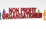 Blickwinkel NGO – gut vernetzt ist halb gewonnen